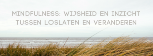 mindfulness is AikiContact ACT Amsterdam Amstelveen